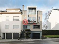 居外网在售卢森堡6卧3卫的房产总占地250平方米