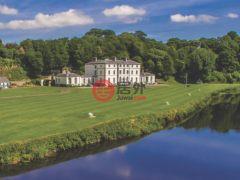 居外网在售爱尔兰12卧16卫的房产总占地607029平方米EUR 12,500,000