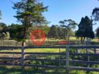 澳大利亚新南威尔士州Oakdale的乡郊地产,1830 Barkers Lodge Road,编号49470811