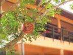 泰国素叻府Na Mueang的房产,109/5 Moo1,编号45897241