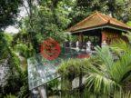 印尼巴厘岛Canggu的房产,编号37515439