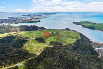居外网在售新西兰Okura Bush总占地335000平方米的土地