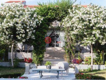 居外网在售西班牙Ibiza9卧7卫的房产总占地1350平方米
